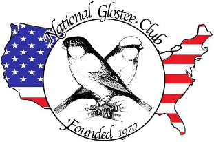 NGC Logo with Flag